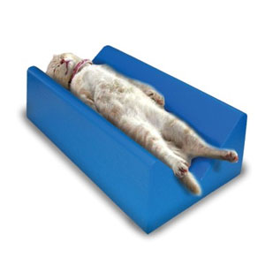 Small-Coated-Veterinary-Immobilizer-CMX